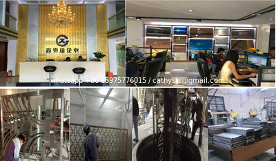 Foshan Xin Tai Jia Stainless Steel  Co.,Ltd